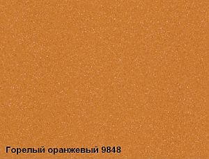 9848_Burnt_Orange