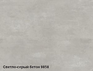 9858_Light_Grey_Concrete